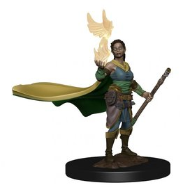 Wiz Kids Dungeons & Dragons Icons of the Realms Premium Figures: W1 Elf Female Druid (Discontinued)