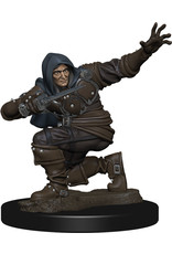 Wiz Kids PF Battles: Premium Painted Figure - W1 Human Rogue Male
