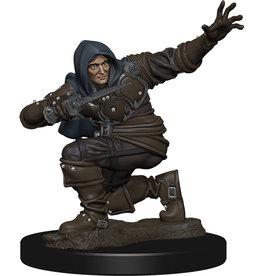 Wiz Kids PF Battles: Premium Painted Figure - W1 Human Rogue Male