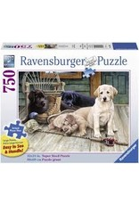 Ravensburger Ruff Day (750 piece - Large)