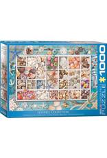 Eurographics Seashell Collection