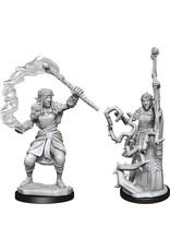 Wiz Kids Nolzur's MUM: W13 Firbolg Druid Female