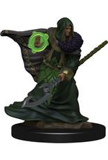 Wiz Kids D&D Icons of the Realms Premium Figures W5 Elf Druid Male