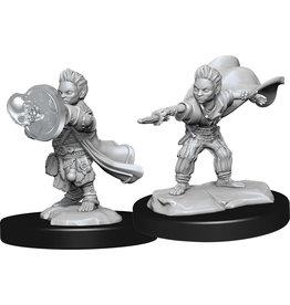 Wiz Kids Pathfinder Miniatures: W14 Halfling Wizard Mal