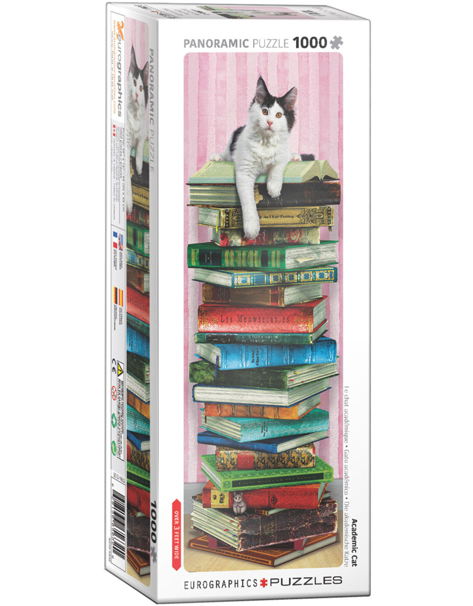 Eurographics Academic Cat