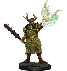 Wiz Kids PF Battles: Premium Painted Figure - W2 Half-Ord Druid Male