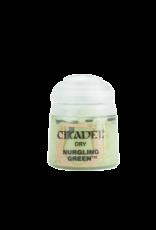 Citadel Citadel Paints: Dry - Nurgling Green