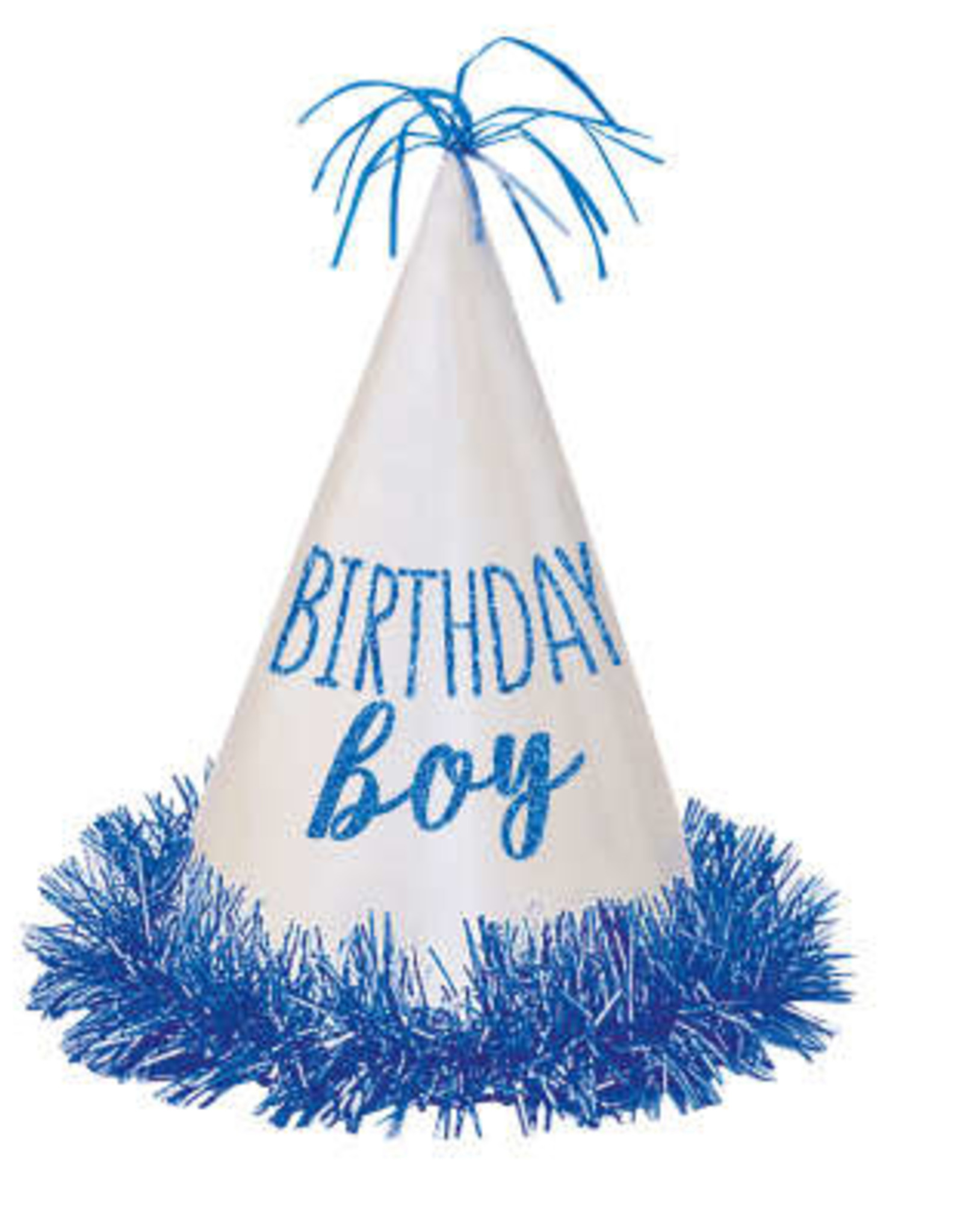 Birthday Boy Glitter Party Hat