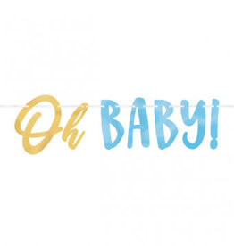 Oh Baby Blue Banner 12FT