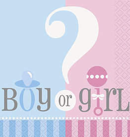 Gender Reveal Beverage Napkins 20ct