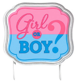 Gender Reveal Cake Topper