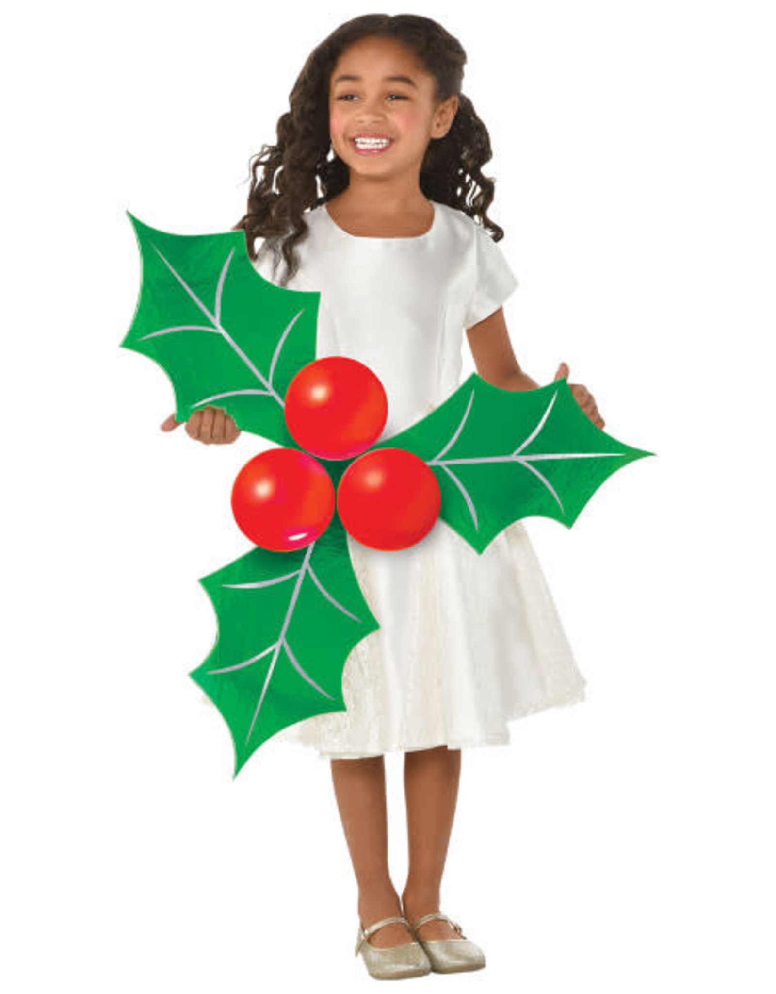 Holly Photo Prop Kit