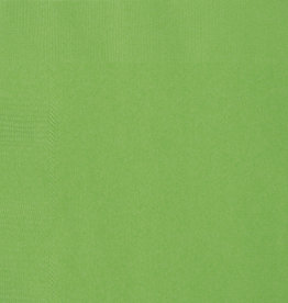 Lime Green Beverage Napkins 50 pk