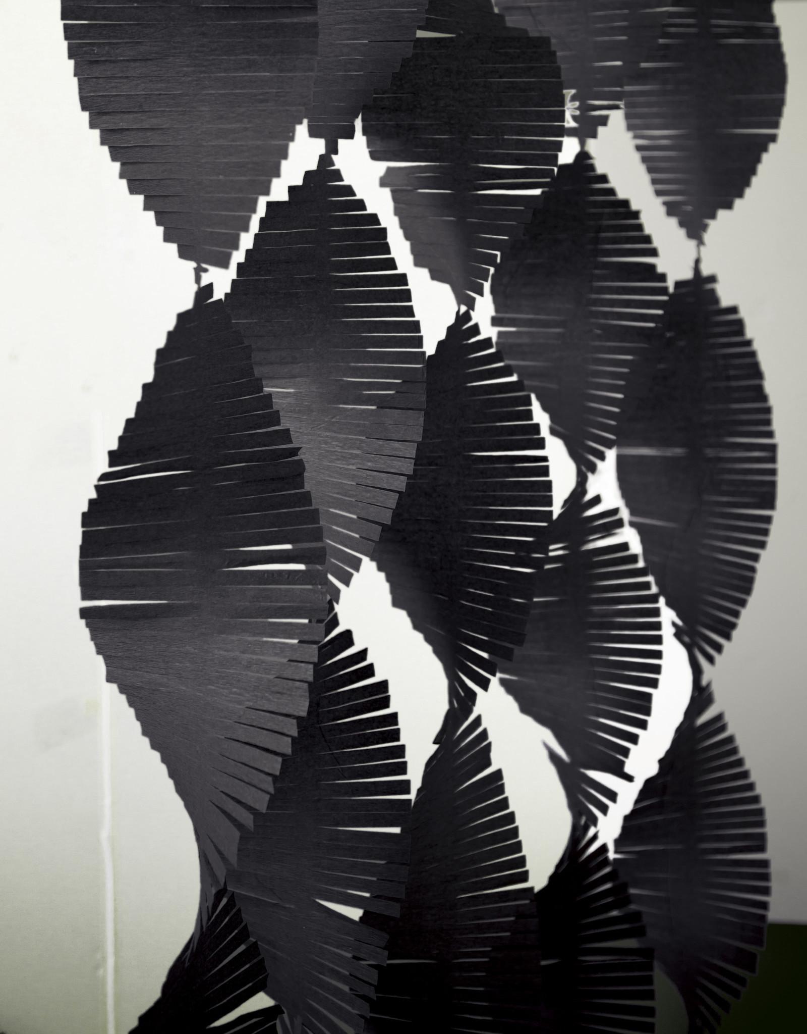Black Paper Fringe Garland 9ft