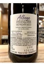 Saliceto Albone Lambrusco di Modena - 750 ML