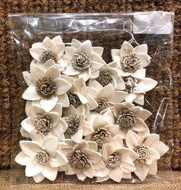 Bag of 16 Dried Rukmani Flowers