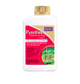 Pyrethrin Garden Spray Concentrate, 8 oz