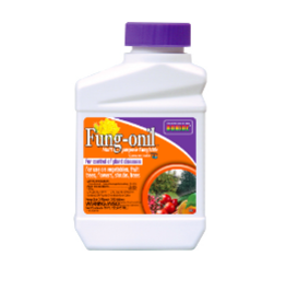 Fungonil Fungicide Concentrate, 16 oz
