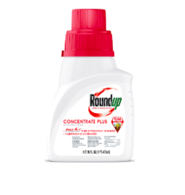 Roundup Weed And Grass Killer Plus Concentrate, 16 oz
