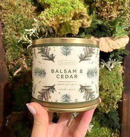 Balsam & Cedar Tin Candle, 11.8 oz