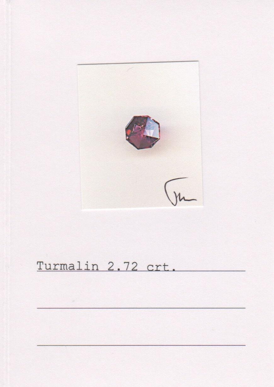 Watermelon Tourmaline Slice, Rubellite & Demantoid Garnet Earrings-3