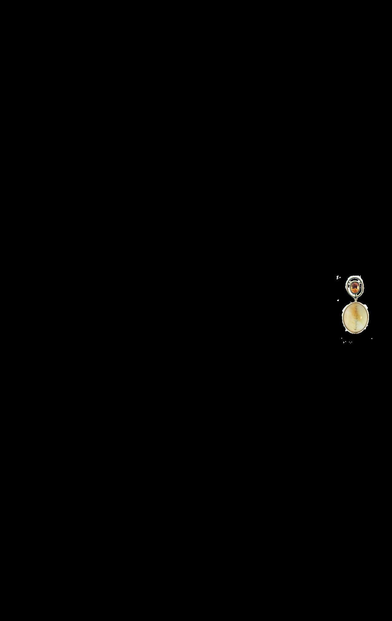 Mandarin Garnet and Citrine Earrings-2