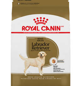 ROYAL CANIN Royal Canin | Labrador Retriever Adult 30 lb