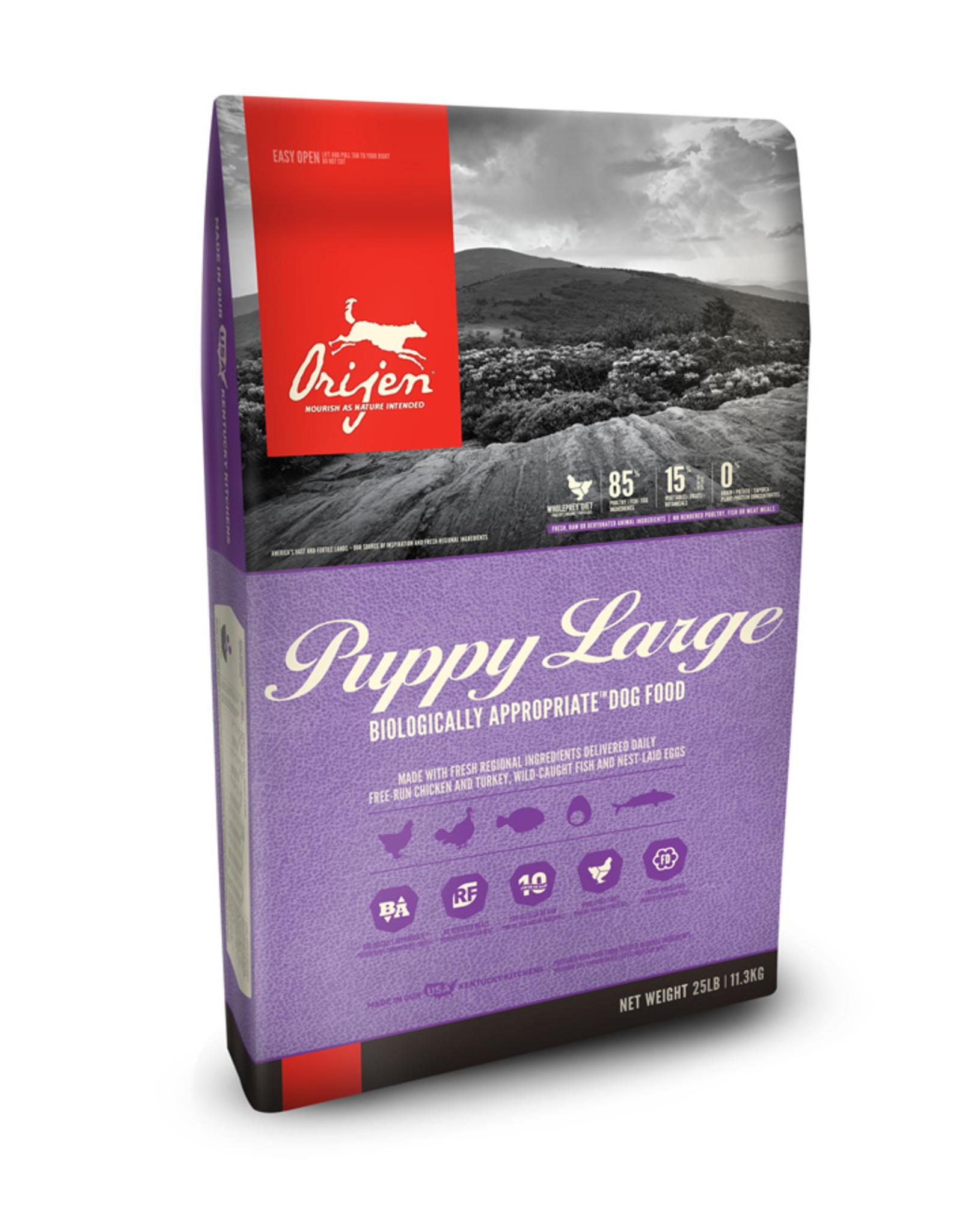 ORIJEN Orijen | Puppy Large Breed