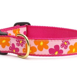 Up Country Up Country | Flower Power Collars and Leashes