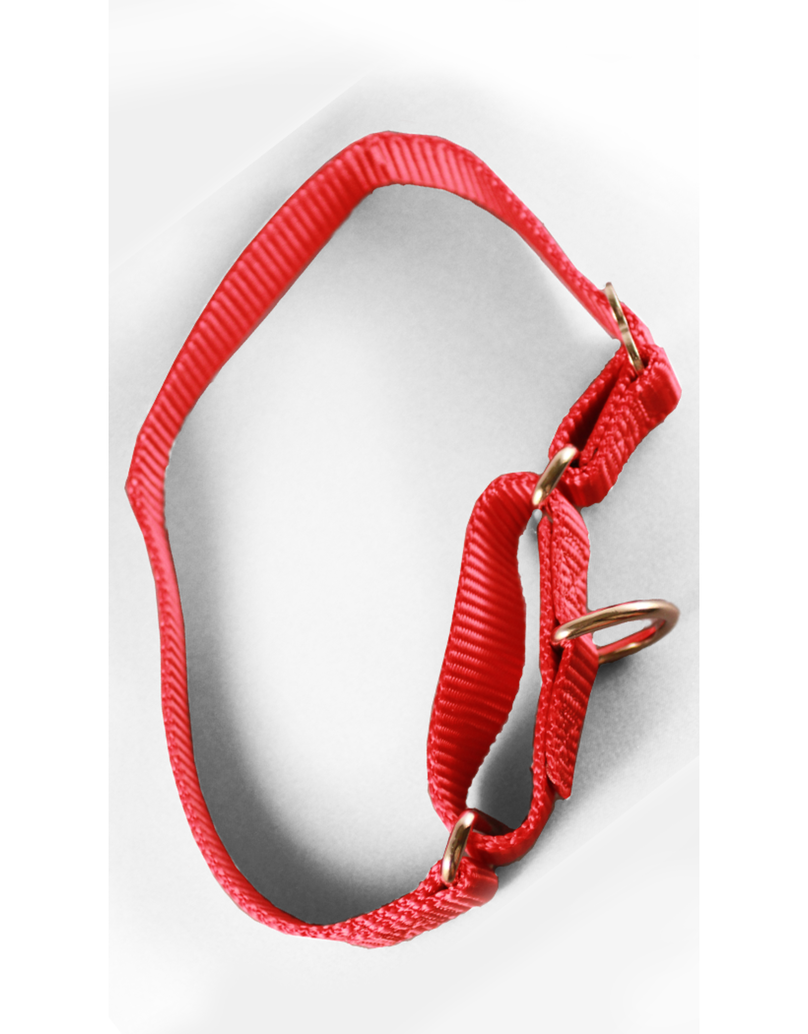 "Crowd Pleaser Grrrip Martingale X-Tra Control 1"" Nylon Collars 12-18 inch or 18-30 inch"