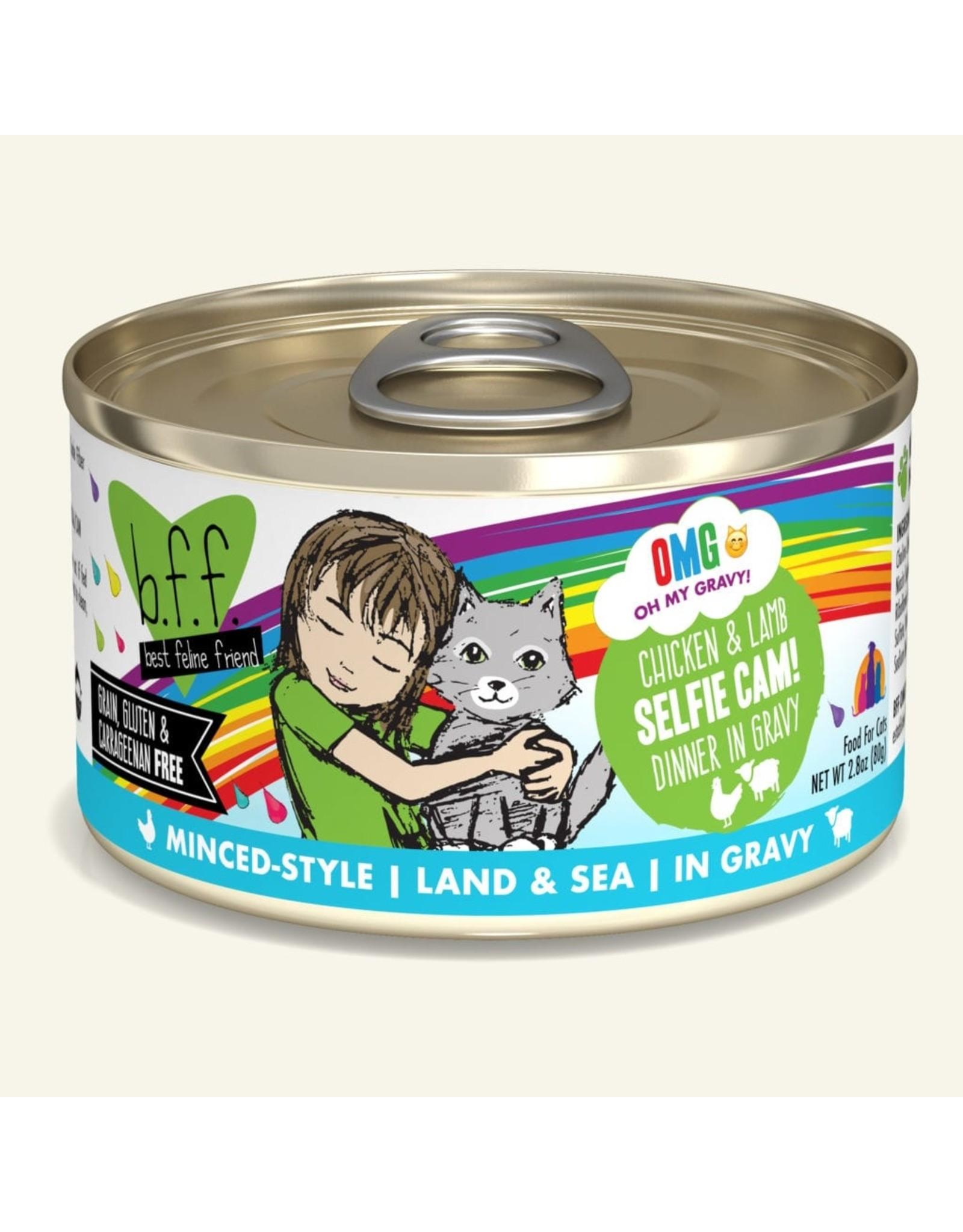 Weruva BFF Weruva B.F.F. OMG Best Feline Friend Oh My Gravy Wet Cat Food Selfie Cam! Chicken & Lamb Dinner in Gravy 3oz Can
