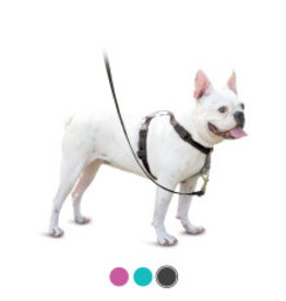 PetSafe Petsafe 3 in 1 Harness
