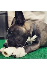 Redbarn Redbarn Filled Bones Chicken & Apple Dog Chew
