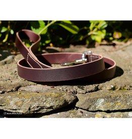 Circle T by Coastal Circle T Latigo Leather Dog Lead 6ft