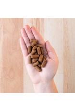 Earthborn Earthborn Earthbites Peanut Flavor Natural Soft Dog Treats 7.5oz Grain Free