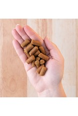 Earthborn Earthborn Earthbites Chicken Meal Recipe Natural Soft Dog Treats 7.5oz Grain Free