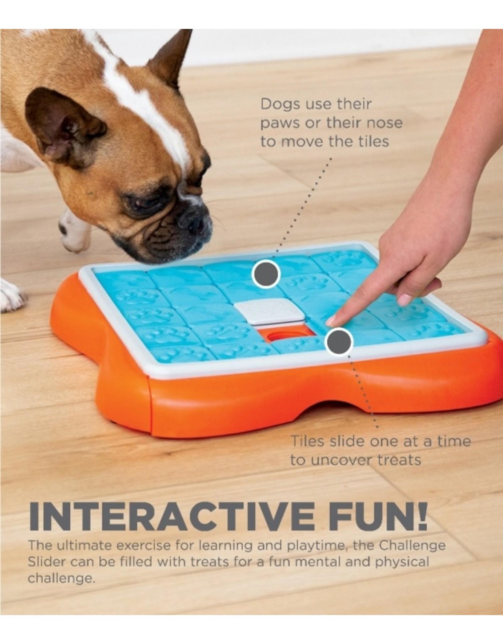 Outward Hound Outward Hound Nina Ottosson Challenge Slider Puzzle Toy