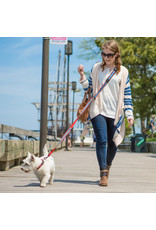 Kurgo Kurgo Quantum 6-in-1 Leash - Hands Free Leash, Double Lead, Tether, and More