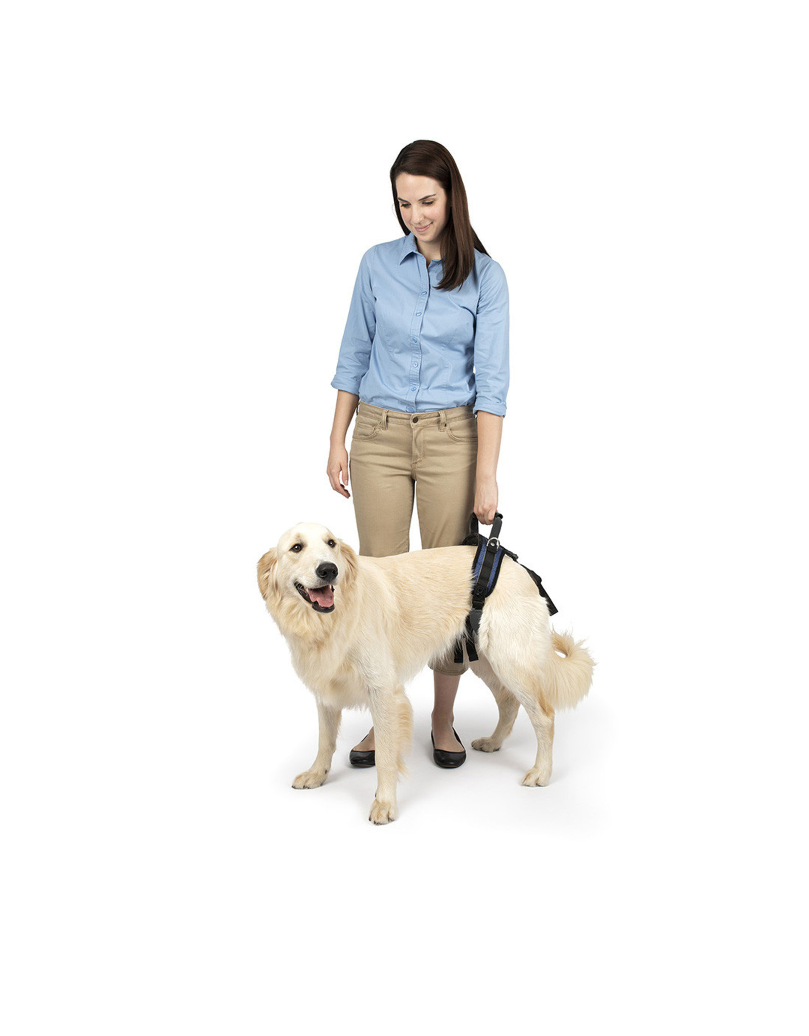 PetSafe CareLift Rear Support Harness for Disabled and Senior Dogs