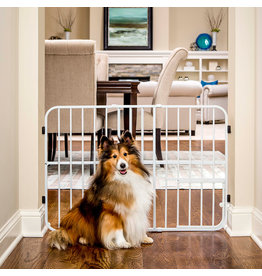 Carlson Tuffy Expandable Gate with Door