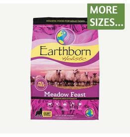Earthborn Earthborn Dog Dry LID Meadow Feast GF