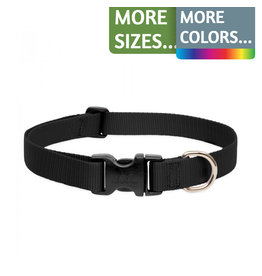 Lupine Lupine 1in Wide Adjustable Dog Collar