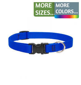 Lupine Lupine 3/4in Wide Adjustable Dog Collar