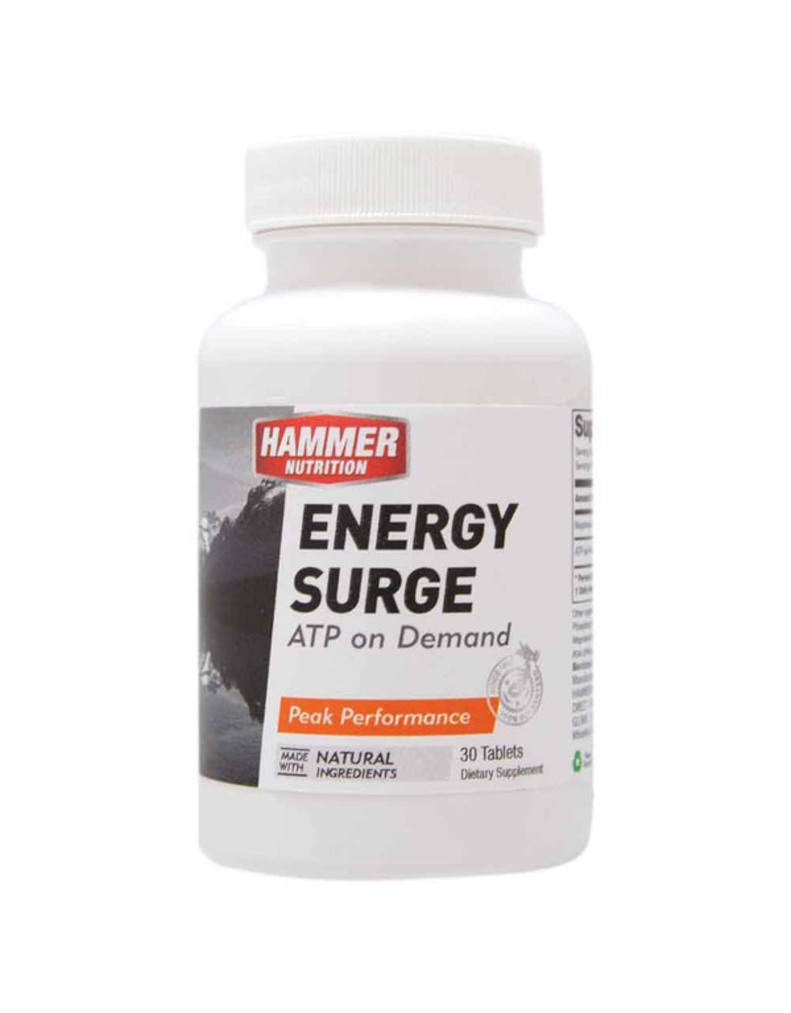 Hammer Nutrition Hammer Nutrition Energy Surge (30 Tab)