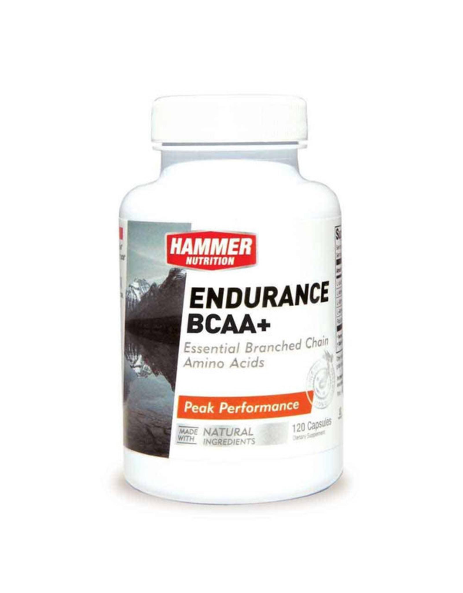 Hammer Nutrition Hammer Nutrition Endurance BCAA+