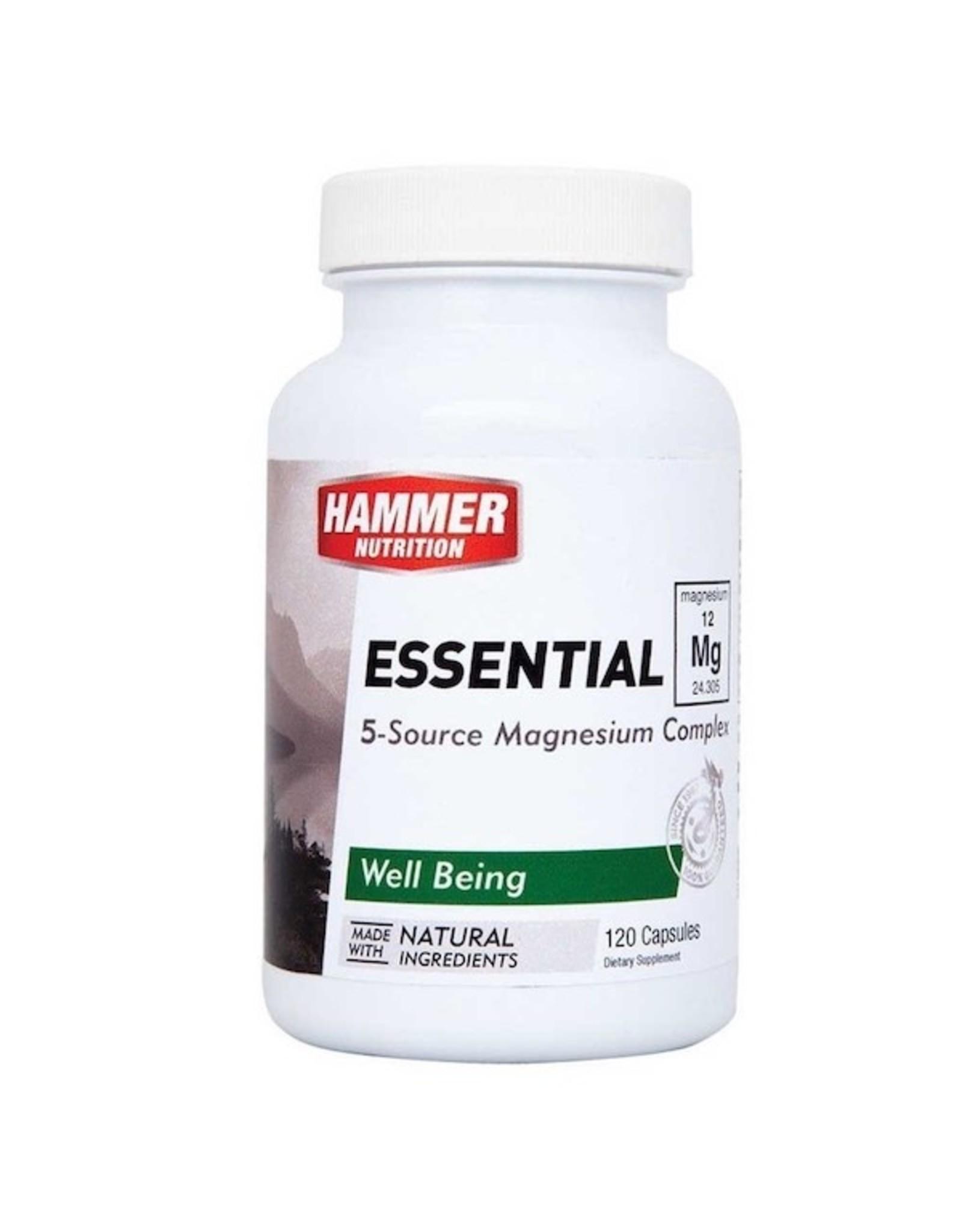 Hammer Nutrition Hammer Nutrition Essential Mg (120 Cap)