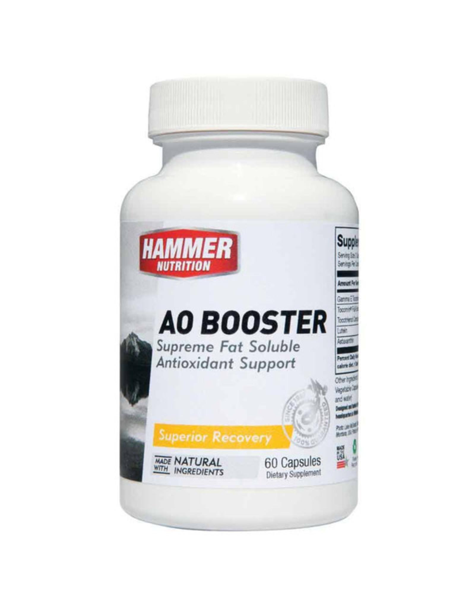 Hammer Nutrition Hammer Nutrition AO Booster (60 Cap)
