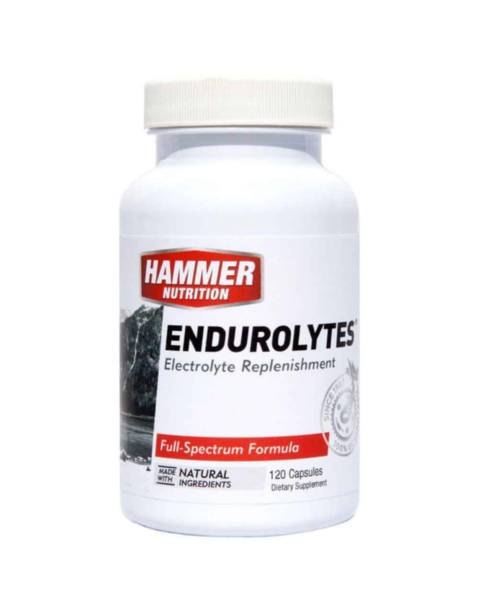 Hammer Nutrition Hammer Nutrition Endurolytes