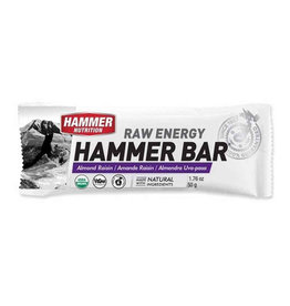 Hammer Nutrition Hammer Nutrition Raw Energy Bar 12 Pack