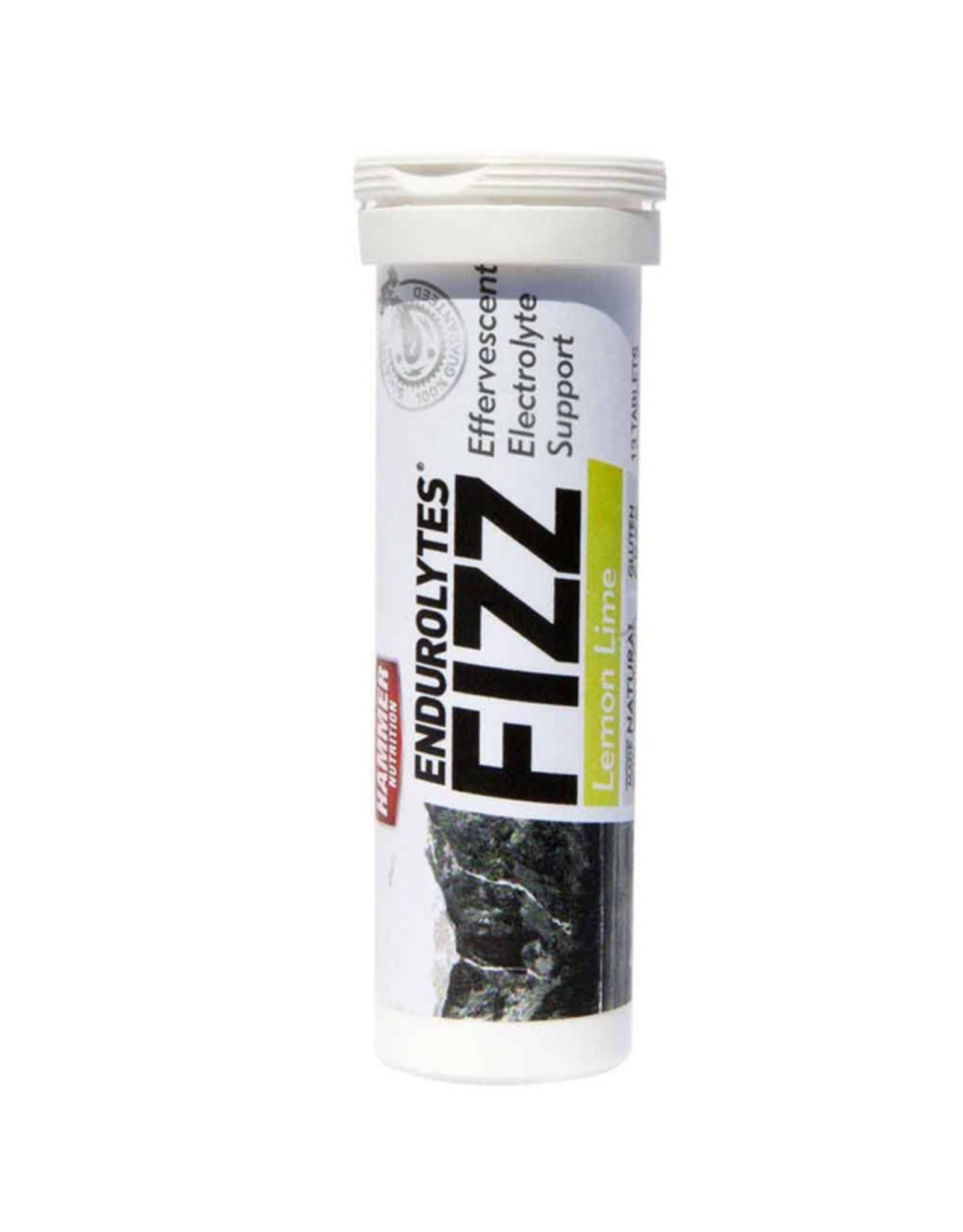 Hammer Nutrition Hammer Nutrition Endurolytes Fizz